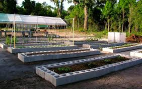 Small Picture Florida Raised Beds Gardens Growin Crazy Acres