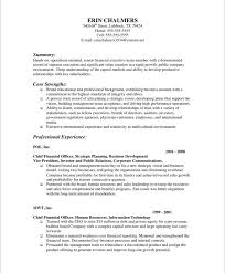 resume introduction examples. finance executive free resume samples blue  sky resumes .