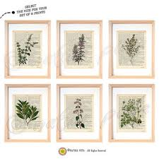 set of 6 herbs kitchen wall art set of 6 herbs dictionary prints on wall art set of 6 with shop herb wall art on wanelo