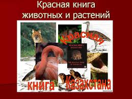 Красная книга животных и растений