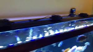72 Freshwater Aquarium Light