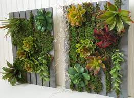 vertical succulent garden in a few easy