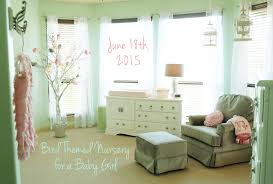 Bird And Owl Themed Nursery Decor For A Baby Girl   Mint Green And Light  Pink