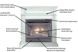 ventless natural gas fireplace insert natural gas fireplace insert features vent free ventless gas fireplace insert