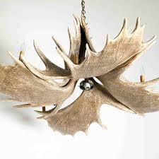 mason moose antler chandelier