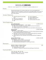 Microsoft Word Templates For Resumes Unique Examples Of Resumes For Jobs Grand See Resume With Picture Stunning