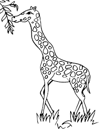 Giraffe Coloring Pages To Tattoo Clip Art Library