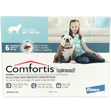 what is comfortis. Plain What And What Is Comfortis W