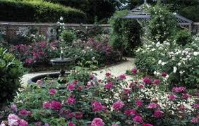 Small Picture Rose Garden Design Excellent Designs Garden Small Rose Garden The