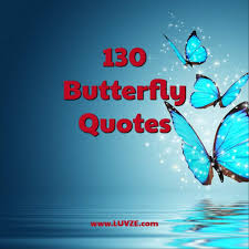 Metamorphosis Quotes Gorgeous 48 Butterfly Quotes And Sayings
