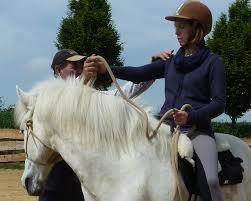 ian benson - A life with horsesA life with horses
