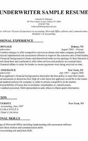 Build Your Resume Amazing Build Your Resume Formatted Templates Example