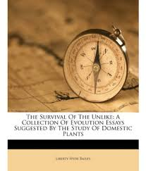 creationism vs evolution essay an essay on science evolution essays doorway the survival of the unlike a collection of evolution essays