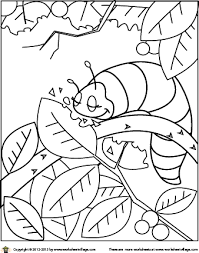 Small Picture CaterpillarColoringPagepng