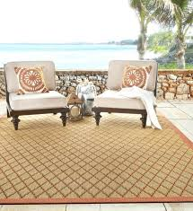 how to clean an outdoor rug with mold indoor and outdoor rugs tangier color persimmon cleaning