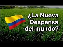 Resultado de imagen para Agro Colombiano En El Mundo,