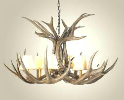 stag horn lamp deer horn chandeliers mule deer antler chandelier antler chandeliers making deer horn chandeliers deer horn stag horn lamp shade
