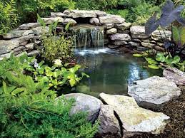 Small Picture Garden Pond Waterfall Designs Images About Ponds On Pinterest