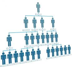 Best Program For Org Charts The Best Structure To Work Under For The Project Manager