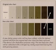 Fall Leaf Color Chart Untitled Document
