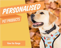 personalised pet s view the range