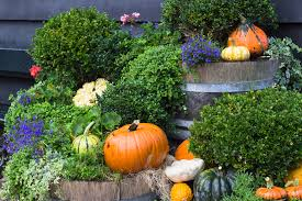 Fall Landscaping 28 Fall Landscaping Tips 3 Fall Landscape Tips From
