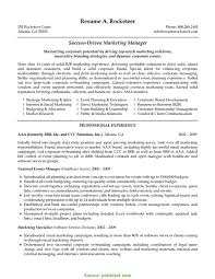 Briliant Sales And Marketing Manager Cv Sample B2b Marketing Manager