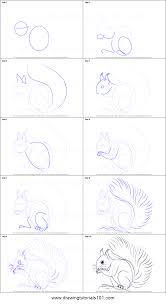 Small Picture How to Draw a Red Squirrel printable step by step drawing sheet