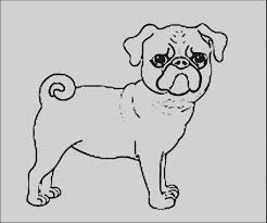 wonderful of pug coloring pages cute dog page free printable 2018 with