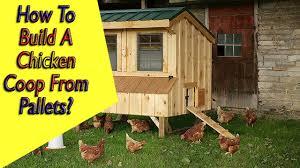 Chicken Coop Designs For 6 Hens
