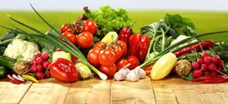 Купить <b>семена редиса</b> | Интернет-магазин Сибирские Сортовые ...