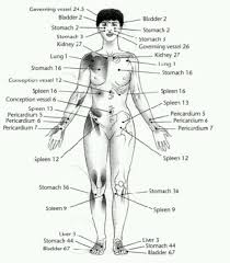 Marma Chart Marma Points Acupuncture Points Acupressure Acupuncture