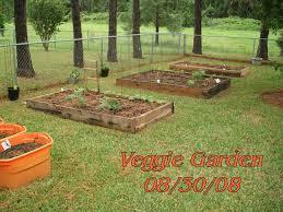 florida vegetable gardening. Our Vegetable Garden In 2008 Florida Gardening G