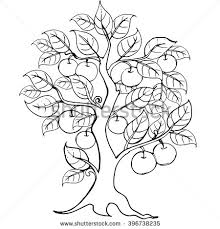Small Picture Apple Tree Sketch Stock Images Royalty Free Images Vectors
