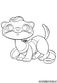 Ferret Coloring Pages Two Ferrets Coloring Page Ferret Coloring