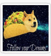 doge follow your dreams. Perfect Follow 247Follow Your Doge Sticker Taco Dreams Sticker To Follow N