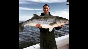 Striped Bass Fishing with Bunker Raritan Bay April 25th 2015 - YouTube