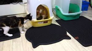 blackhole cat litter mat litter box mat innovative dual structure you