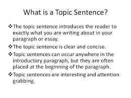 Example Essays Topics Gorgeous Descriptive Essay Topics Examples Essay Topic Sentence Examples