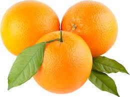 orange clipart png. orange image free download clipart 3 png