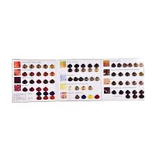 Professional Salon Silky Hair Dyes Color Mixing Chart Buy Silky Hair Color Mixing Chart Color Chart Hair Dyes Professional Salon Hair Color Chart