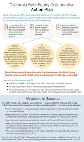 How To Develop A Birth Plan Action Plan California Maternal Quality Care Collaborative