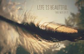 Beauty Of Life Quote Best of Beautiful Life Quote Quote Number 24 Picture Quotes