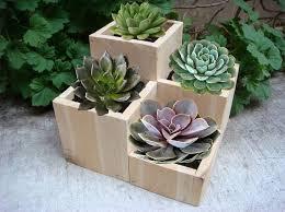 flower planter garden flower pot wood low tabletop size