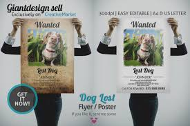 Lost Dog Flyer Template Word Wonderful Of Lost Dog Flyer Template Word Missing Poster Flyer 23
