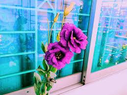 nondini flower wallpaper