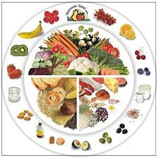 Физиология питания Технология jimdo page  В начало страницы
