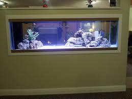 ...  http://www.indooroceans.com/wp-content/uploads/2014/12/David_125_inwall-1024x768.jpg  ...