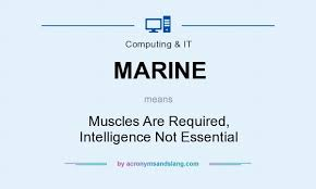 not essential. Contemporary Not MARINE  Muscles Are Required Intelligence Not Essential In Governmental U0026  Military By AcronymsAndSlangcom With T