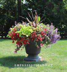 8 bold and colorful flower pot ideas